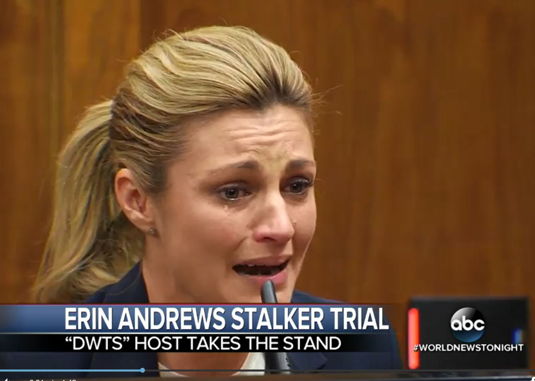 erin andrews stand