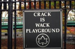 crack-is-wack-playground-via-team-bloodpactscouts-and-youtube