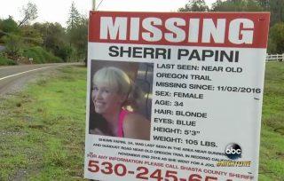 Sherri Papini missing via ABC screengrab