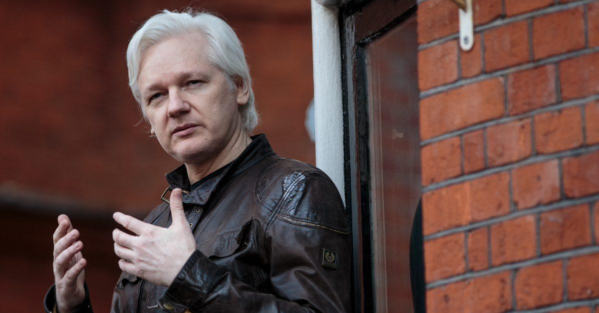 Assange testily senate