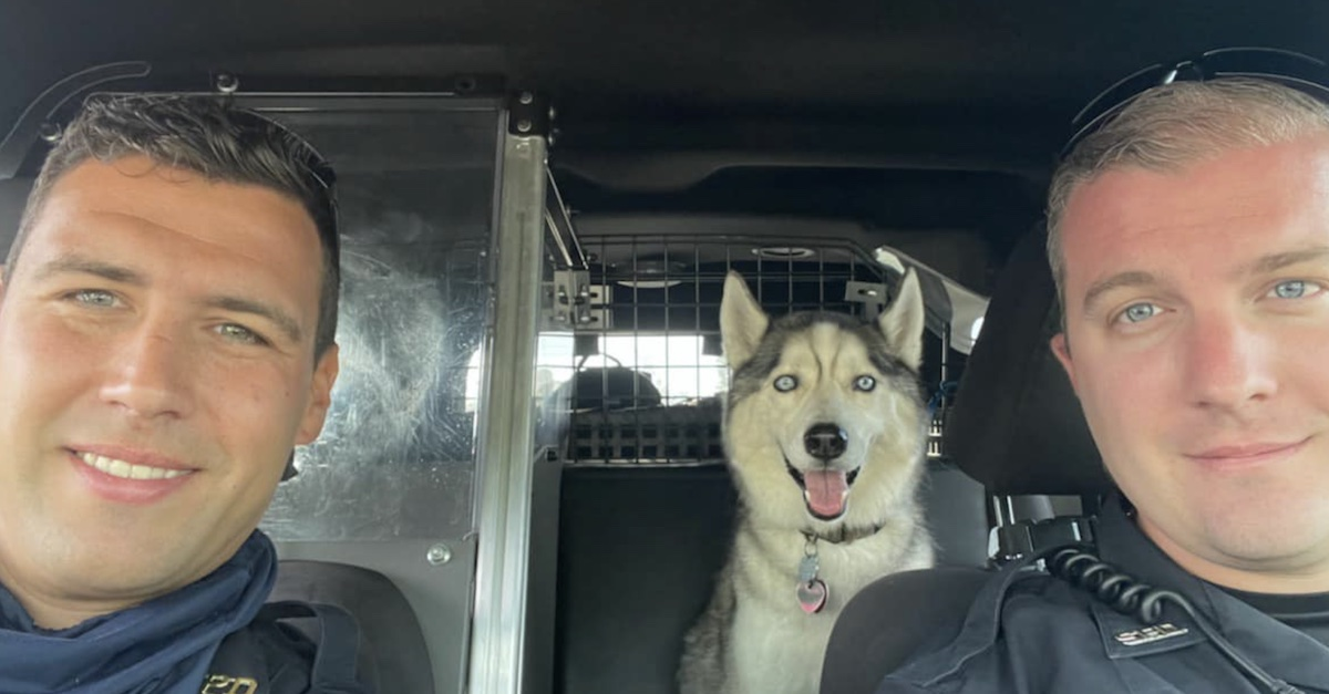 Officers Adamson and Bashioum with Zeke the husky