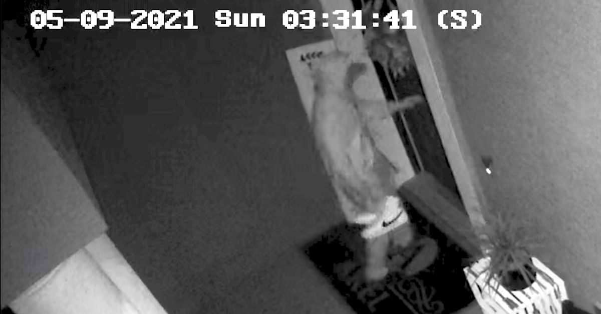A still frame from a surveillance camera shows who prosecutors and law enforcement authorities believe to be alleged murderer Aiden Fucci approaching the front door of his home while carrying his shoes.