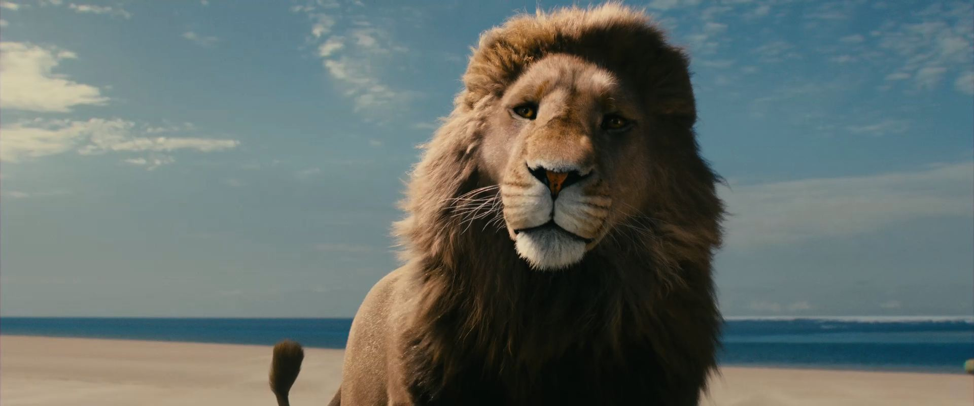 Aslan-lion-2-Chronicles-of-Narnia-Voyage-of-the-Dawn-Treader-wallpaper