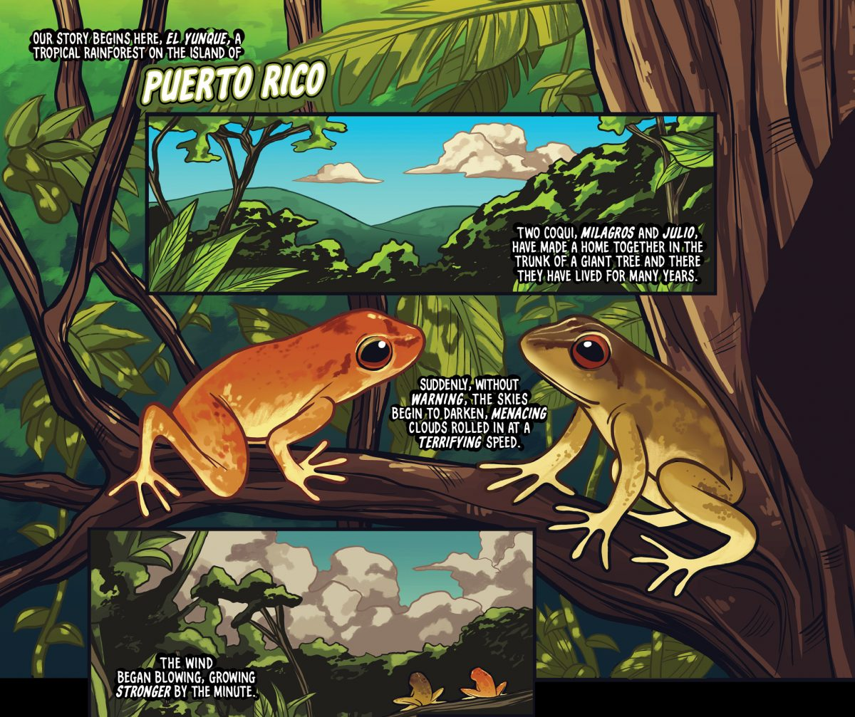 """""""Coqui"""" by Javier Muñoz and Sabrina Cintron for the """"Ricanstruction"""" anthology for Puerto Rico"""