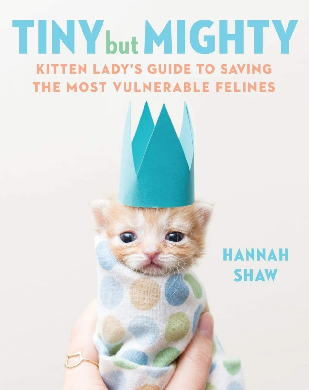 Tiny But Mighty Kitten Lady book cover