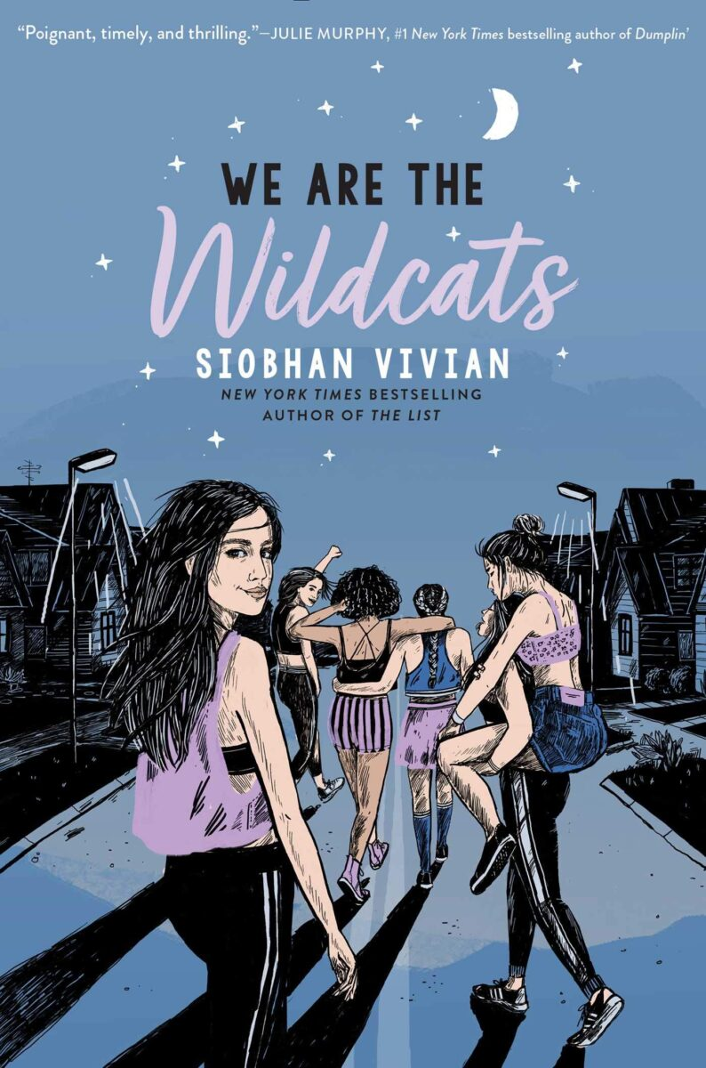 Book cover for We Are The Wildcats by Siobhan Vivian